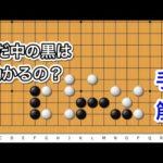 【囲碁】手筋講座〜官子譜編〜実戦にできやすい編~No421